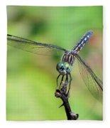 Blue Dasher Dragonfly On A Branch Fleece Blanket