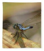 Blue Dasher On Old Leaf Fleece Blanket