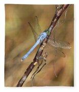 Blue Dragonfly Portrait Fleece Blanket