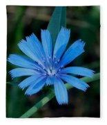 Blue Chicory Flower Fleece Blanket
