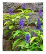 Blue Ginger At The Wall Fleece Blanket