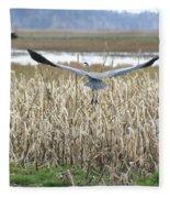 Blue Heron Flight Fleece Blanket