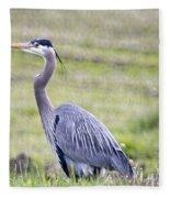 Blue Heron In Northern Wa  Fleece Blanket