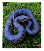Blue Hognose Fleece Blanket