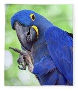 Blue Hyacinth Macaw Fleece Blanket