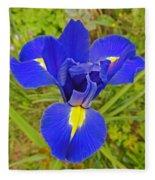 Blue Iris Beauty Fleece Blanket