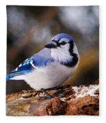 Blue Jay Day Fleece Blanket