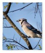 Blue Jay Fleece Blanket