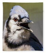 Blue Jay Portrait Fleece Blanket