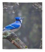 Blue Jay Song Fleece Blanket