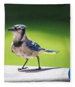 Blue Jay Walk Fleece Blanket