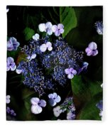 Blue Lace Fleece Blanket