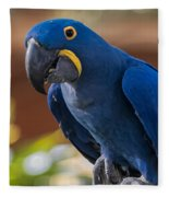 Blue Macaw Fleece Blanket