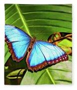 Blue Morpho Butterfly 2 - Paint Fleece Blanket