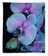 Blue Orchid On Black Fleece Blanket