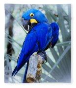 Blue Parrot Fleece Blanket