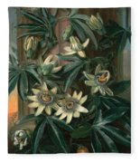Blue Passion Flower For The  Temple Of Flora By Robert Thornton Fleece Blanket