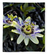 Blue Passion Flower Fleece Blanket