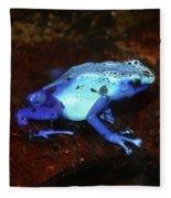 Blue Poison Dart Frog - Dendrobates Azureus Fleece Blanket