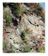 Blue Ridge Mountain Fleece Blanket