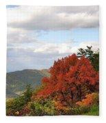 Blue Ridge Parkway, Buena Vista Virginia 5 Fleece Blanket