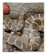 Montreat Water Snake Fleece Blanket