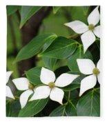 Blue Shadow Dogwood Flowers Fleece Blanket