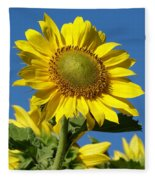 Blue Sky Sunflower Day Fleece Blanket