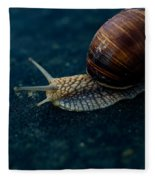 Blue Snail Fleece Blanket