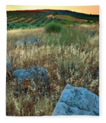 blue stones amongst the olive groves near Iznajar Andalucia Spain Fleece Blanket