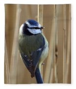 Blue Tit On Reed Fleece Blanket
