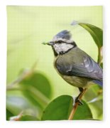 Blue Tit With Caterpillar Fleece Blanket