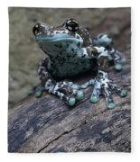 Blue Tree Frog Fleece Blanket