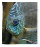 Blue Tropical Fish Fleece Blanket