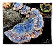 Blue Turkeytail Fungi Fleece Blanket