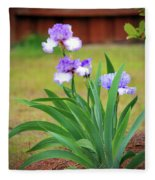 Blue Violet Irises  Fleece Blanket
