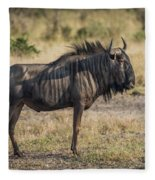 Blue Wildebeest Standing On Savannah Staring Ahead Fleece Blanket