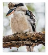 Blue-winged Kookaburra Fleece Blanket