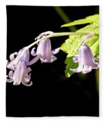 Bluebells Under The Sun Ray. Fleece Blanket