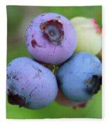 Blueberries On The Vine 2 Fleece Blanket