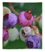 Blueberries On The Vine 5 Fleece Blanket