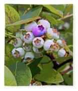 Blueberries On The Vine 7 Fleece Blanket