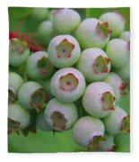 Blueberries On The Vine 9 Fleece Blanket