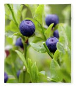 Blueberry Shrubs Fleece Blanket