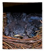 Bluebird Babies Dreaming Of Flight Fleece Blanket