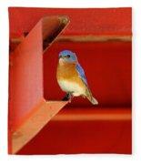 Bluebird On Red Fleece Blanket
