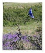 Bluebird Pair In Blickleton Fleece Blanket