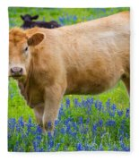 Bluebonnet Cow Fleece Blanket