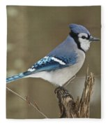 Bluejay 012 Fleece Blanket