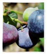 Blues In The Florida Berries Fleece Blanket